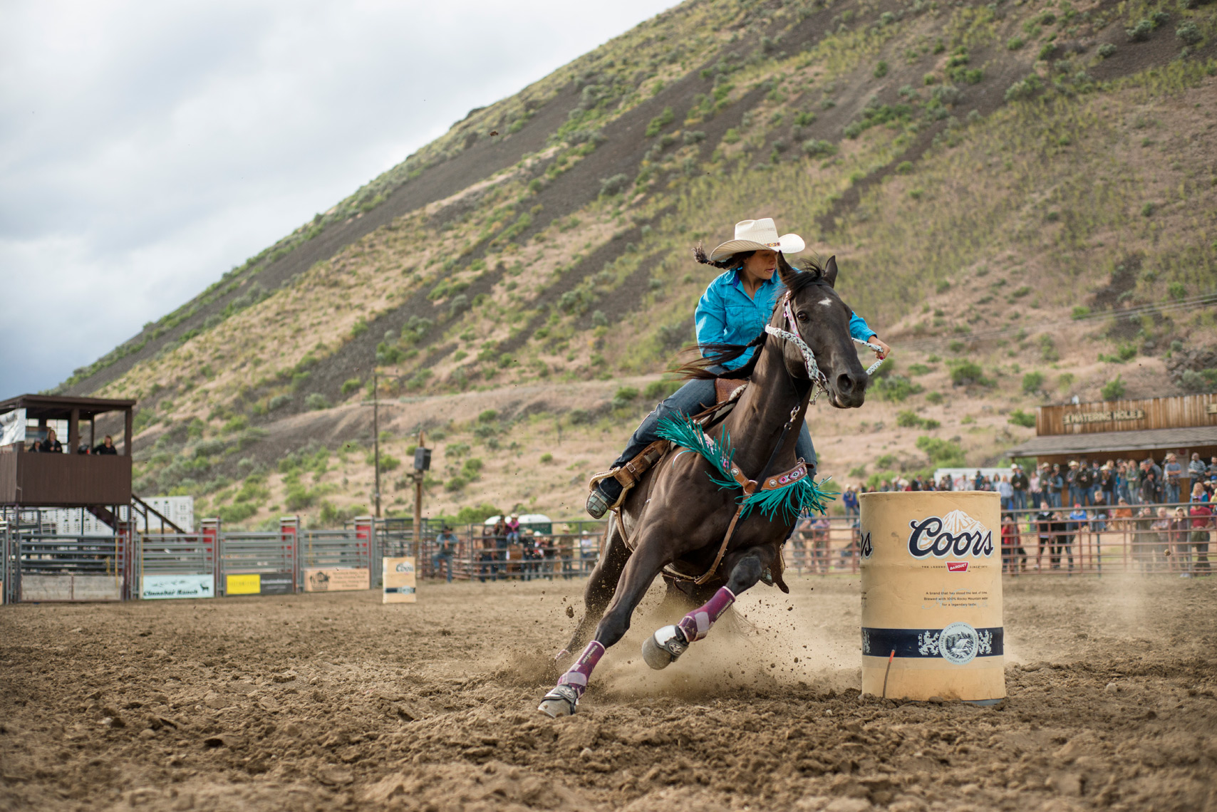 Barrel Racing - Women of Rodeo