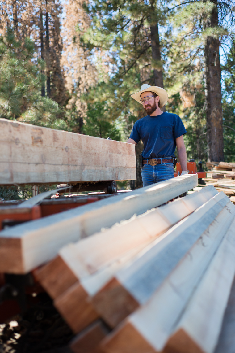 Sustainable lumber practices
