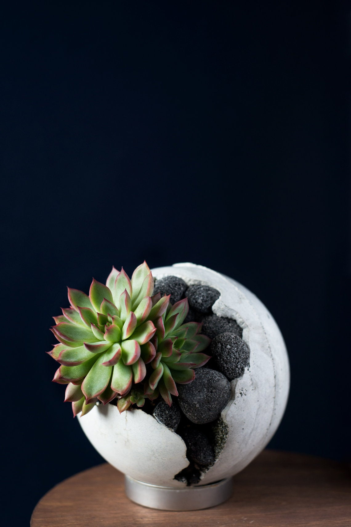 Concrete Orb with Celestite Crystal and Succulent