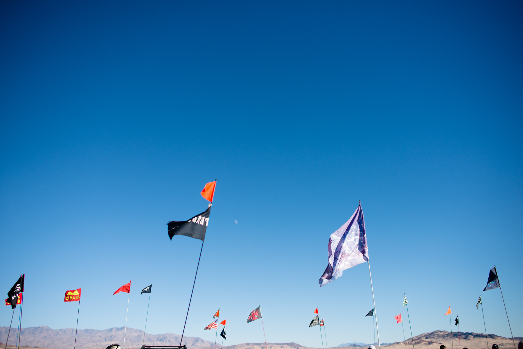 Flags at Dumont Dunes
