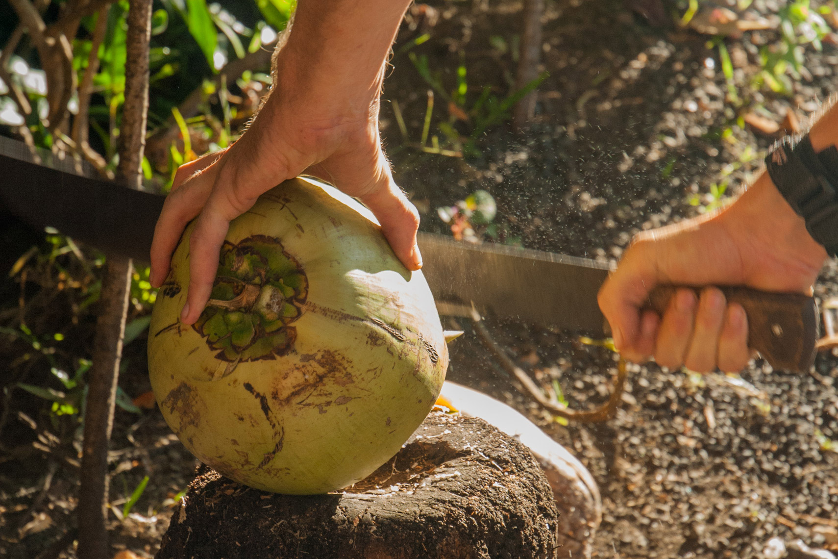Coconut water and machete