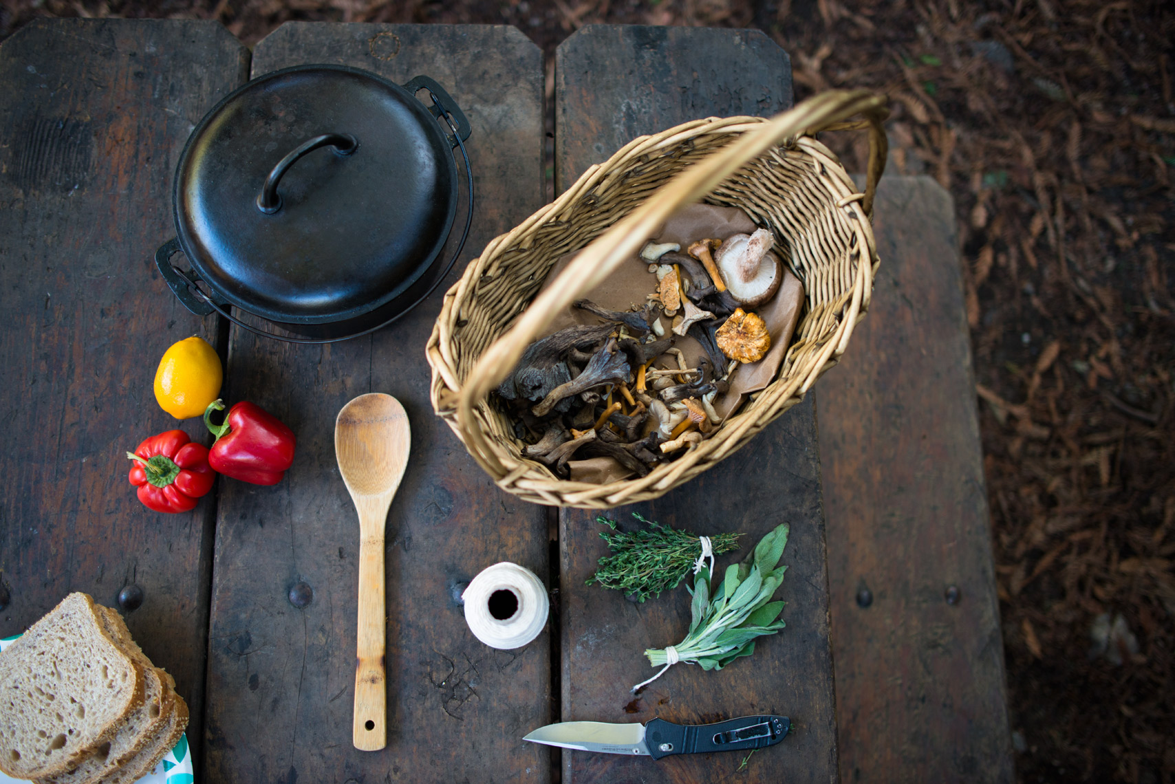 Foraged forest feast