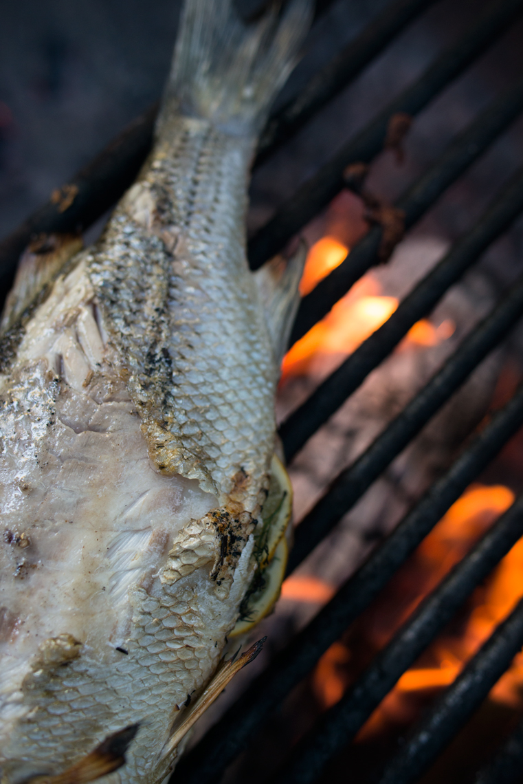 Open fire grilled sea bass with skin